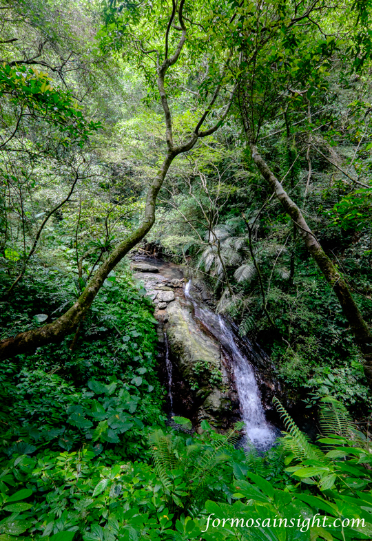 One of many waterfalls in a shady gorge in Eastern Taiwan.